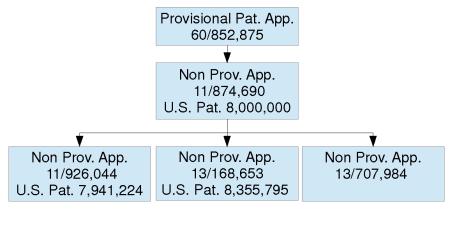 USPAT8000000_ContinuityData